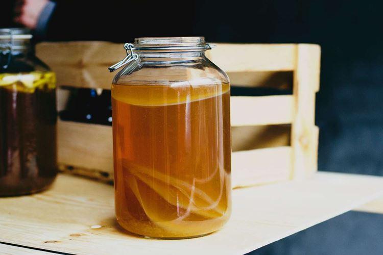 Чайный гриб: как вырастить, уход и употребление