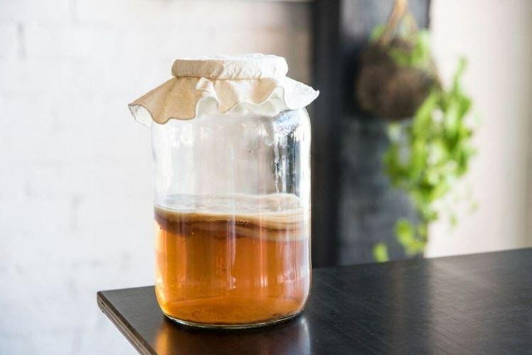 Народная медицина - Чайный гриб