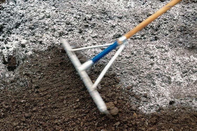 Как раскислить почву на огороде известью
