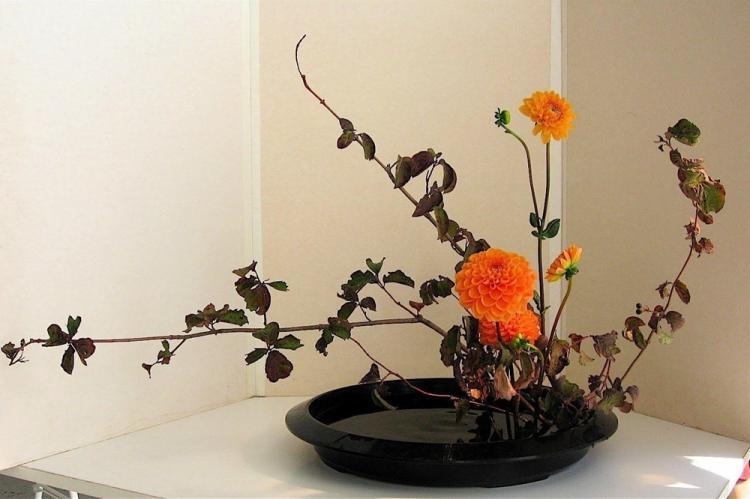 Искусство икебаны - Декор комнаты своими руками