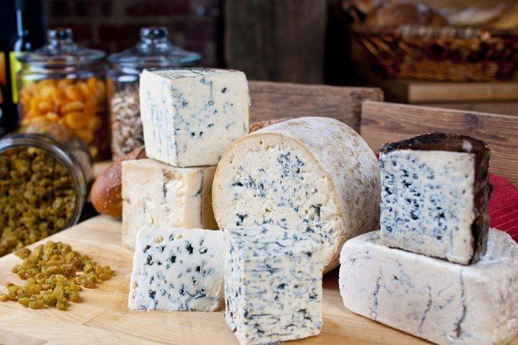 Виды сыров с плесенью: названия, фото и описания