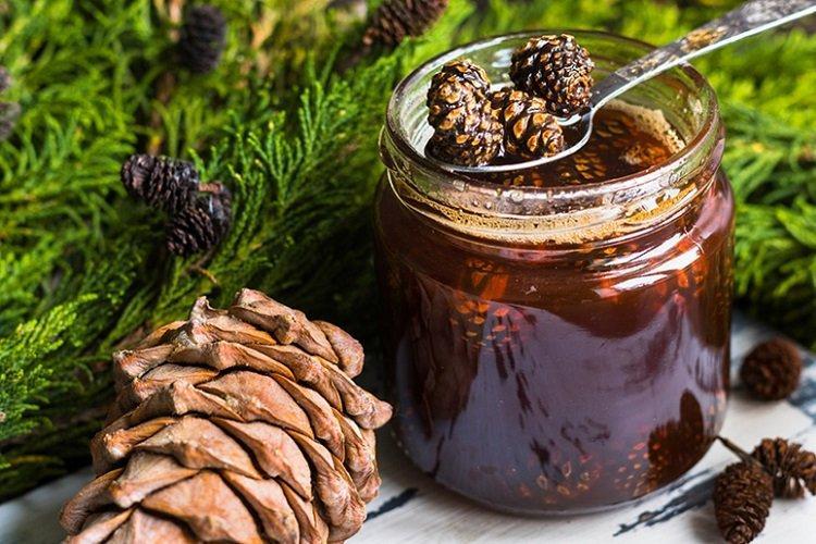 20 рецептов очень вкусного варенья из сосновых шишек