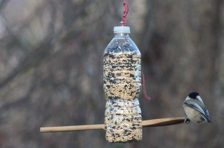 Бункерная кормушка для птиц из бутылки своими руками