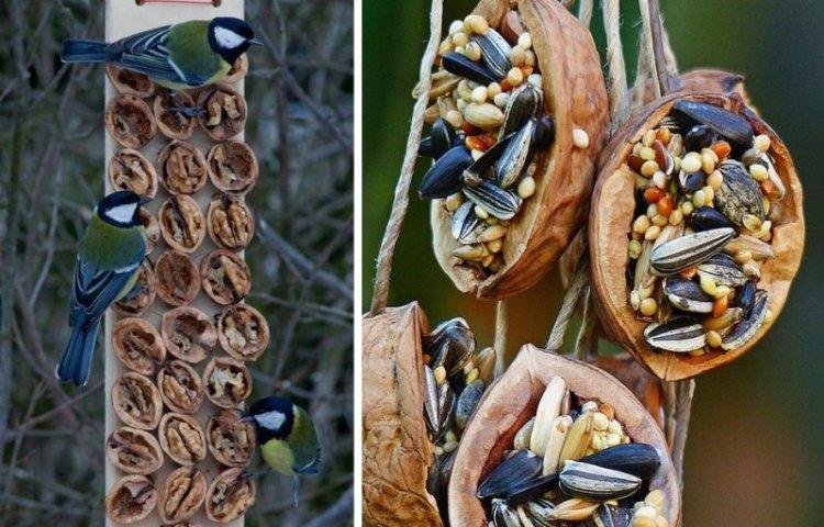 Ореховая доска - Кормушки для птиц своими руками
