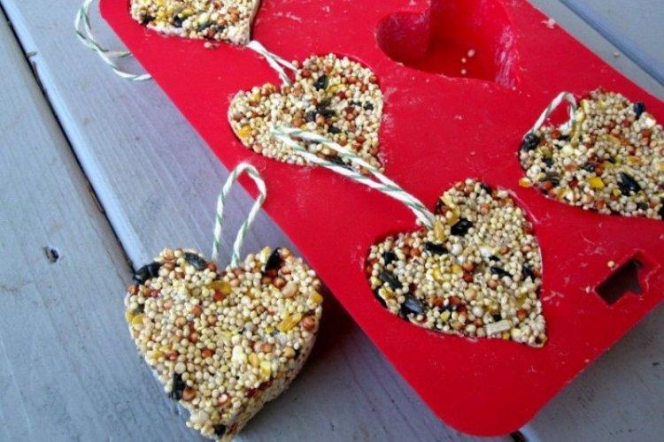 Кормушка-печенье для птиц своими руками