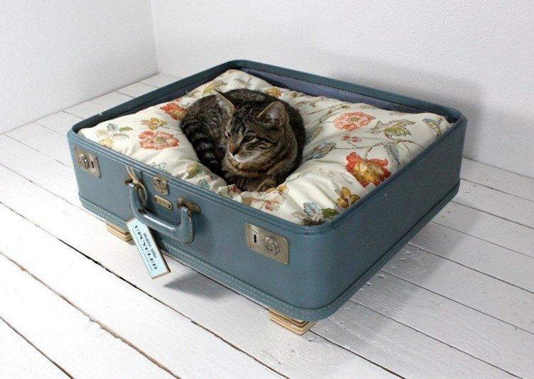 Лежанка для кошки из старого чемодана своими руками