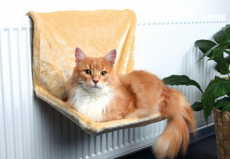 Лежанка для кошки на батарею своими руками