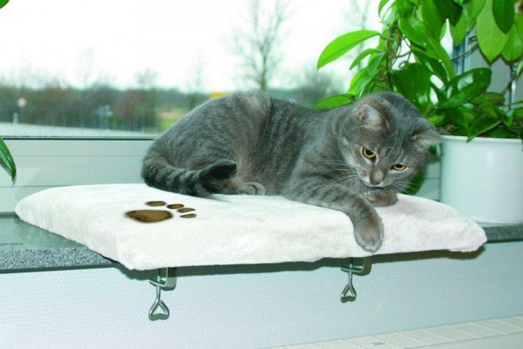 Лежанка для кошки на подоконник своими руками