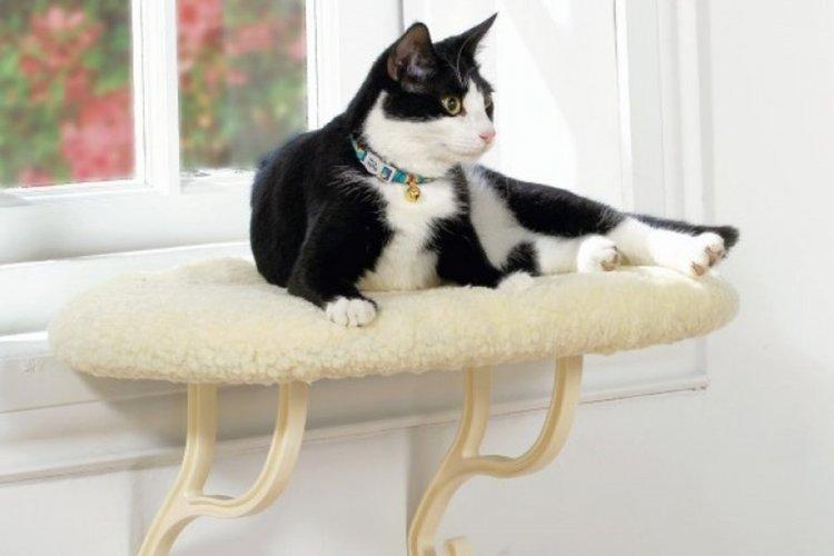 Лежанка для кошки своими руками - фото и идеи