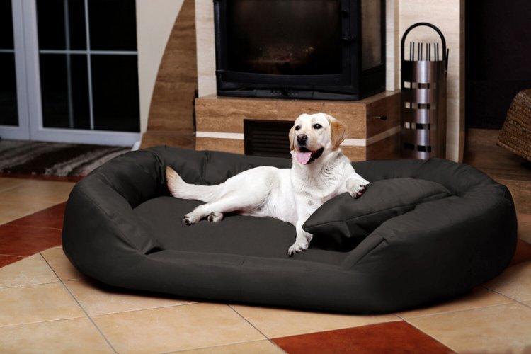 Лежанка-диван для собаки своими руками