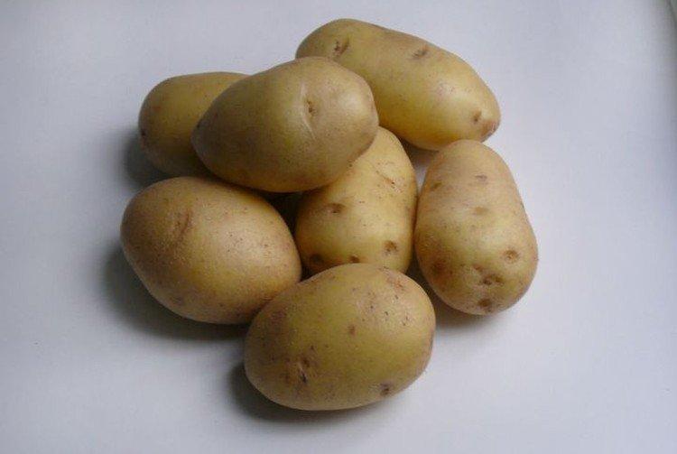 Артемис - Ранние сорта картофеля