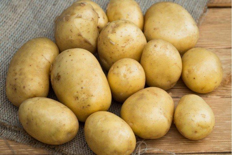 Метеор - Ранние сорта картофеля