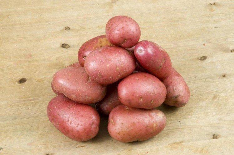 Журавинка - Поздние сорта картофеля