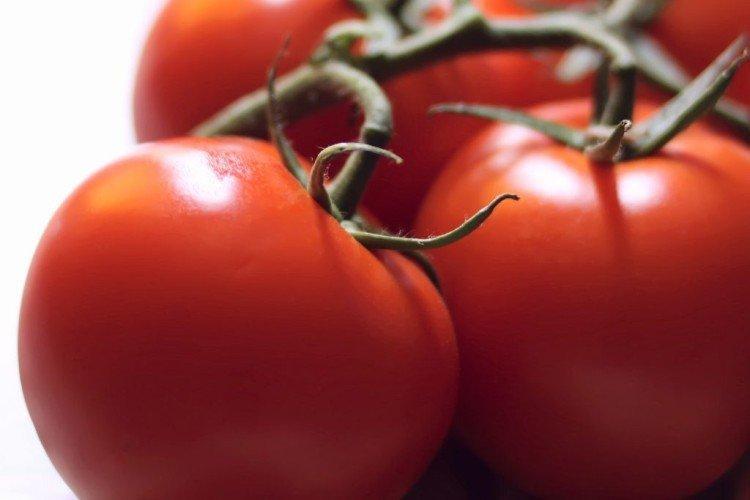 Чудо рынка - Средние и поздние сорта томатов для теплиц