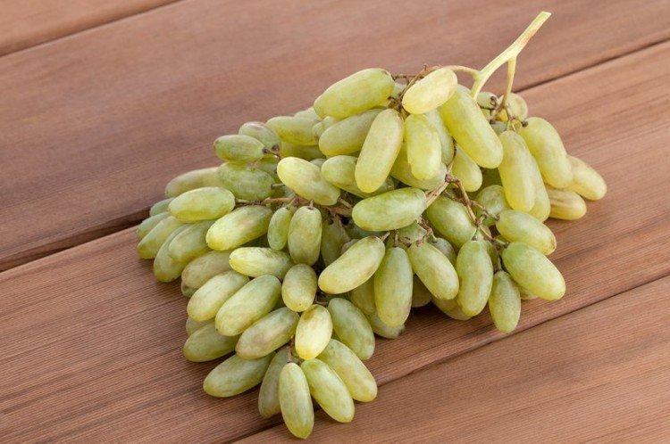 Дамские пальчики - Сорта винограда среднего срока созревания