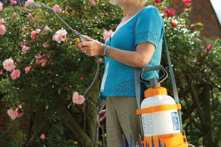 Медный купорос от грибка - применение в садоводстве