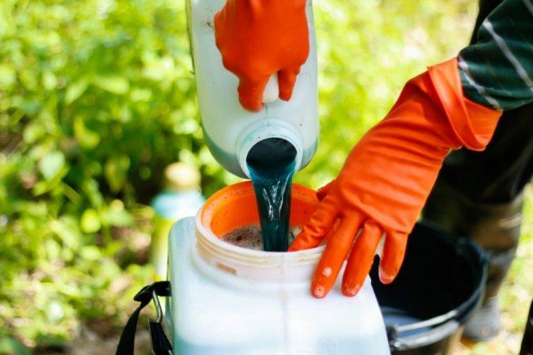 Бордосская смесь - Медный купорос применение в садоводстве