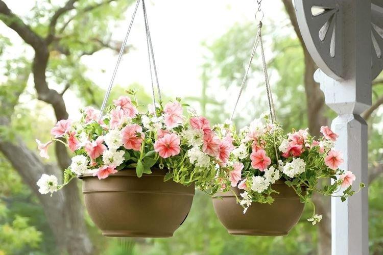 Подвесные - Виды уличных вазонов для цветов