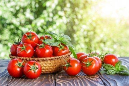 Низкорослые томаты: лучшие сорта с фото и названиями (каталог)