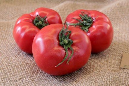 Розовые помидоры: лучшие сорта с фото и названиями (каталог)