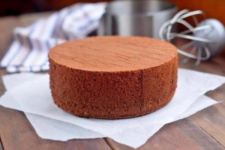 15 лучших рецептов, как испечь пышный шоколадный бисквит