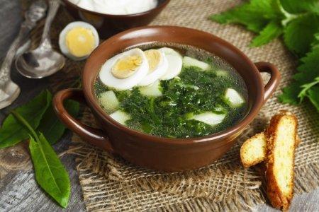 12 простых и вкусных щавелевых супов с яйцом