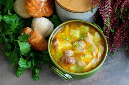 Грибной суп из белых грибов: 15 самых вкусных рецептов