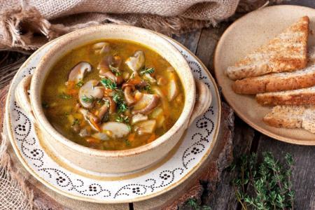 Грибной суп: 14 самых вкусных рецептов приготовления