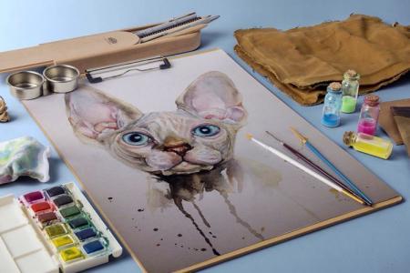 Как нарисовать кошку: 7 легких способов (пошагово)