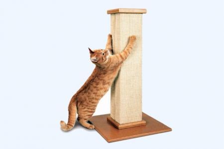 Когтеточка для кошки своими руками: 8 отличных идей