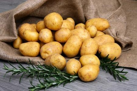 Лучшие сорта картофеля: фото, названия и описания (каталог)