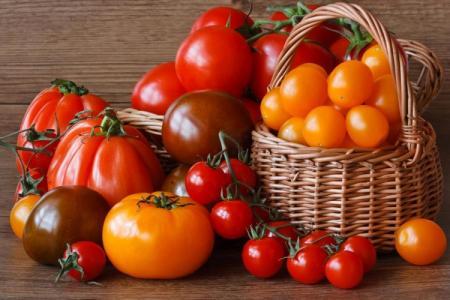 Лучшие сорта томатов для Подмосковья: фото, названия и описания (каталог)