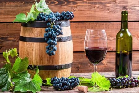 Лучшие сорта винограда для вина: фото, названия и описания (каталог)
