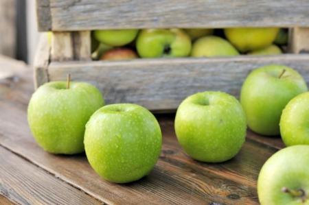 Зеленые яблоки: лучшие сорта с названиями и фото (каталог)