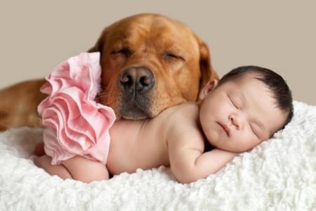 Маленькие дети и их большие собаки: 10 душевных фото