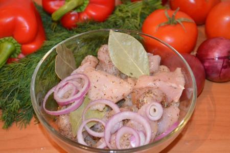 Маринад для шашлыка из курицы: 15 самых вкусных рецептов